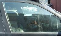 Стекла боковые BMW X5 E53